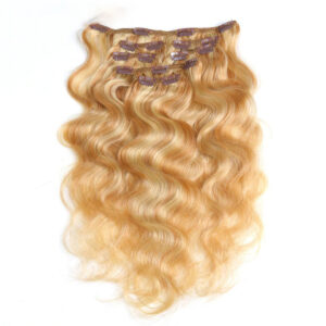 https://wigsstore.com/product/fashion-clip-7pcs-in-human-hair-extensions/